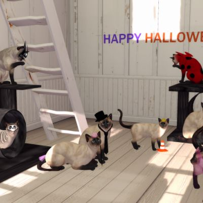 The Kitties Halloween Party