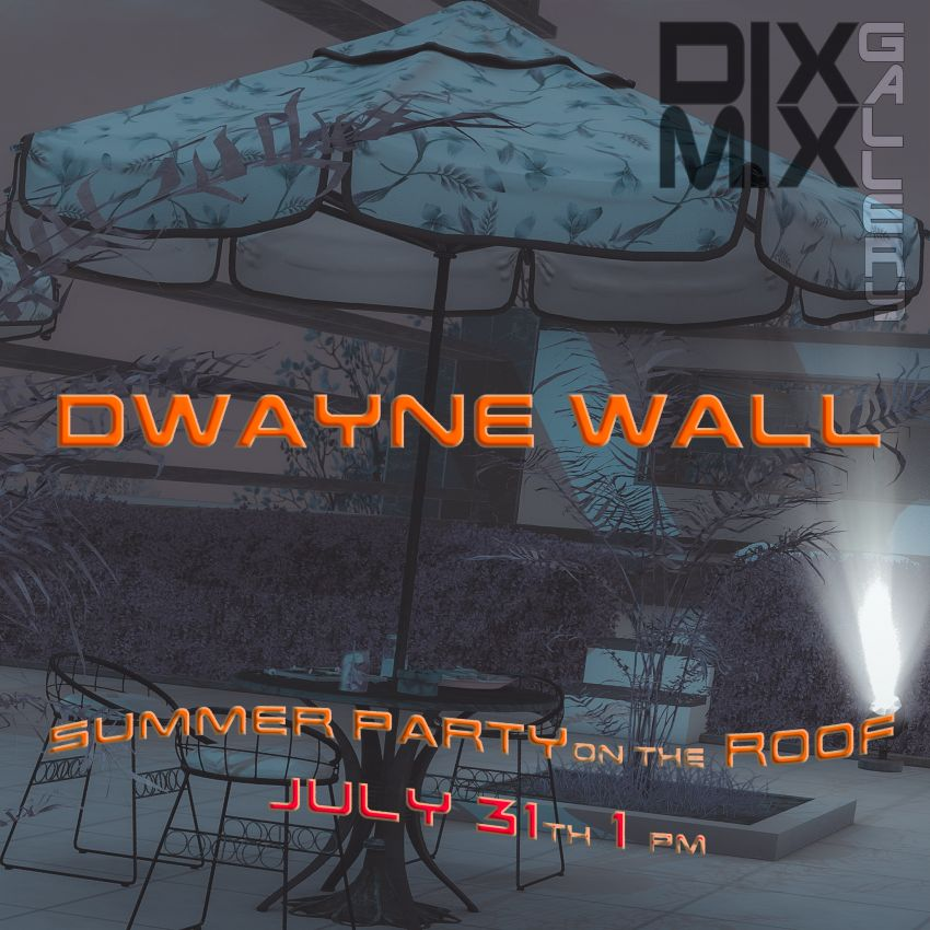 <span>Summer Party with Dwayne Wall on the roof of the Dixmix Gallery!</span>